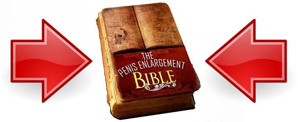 Enlargement Bible